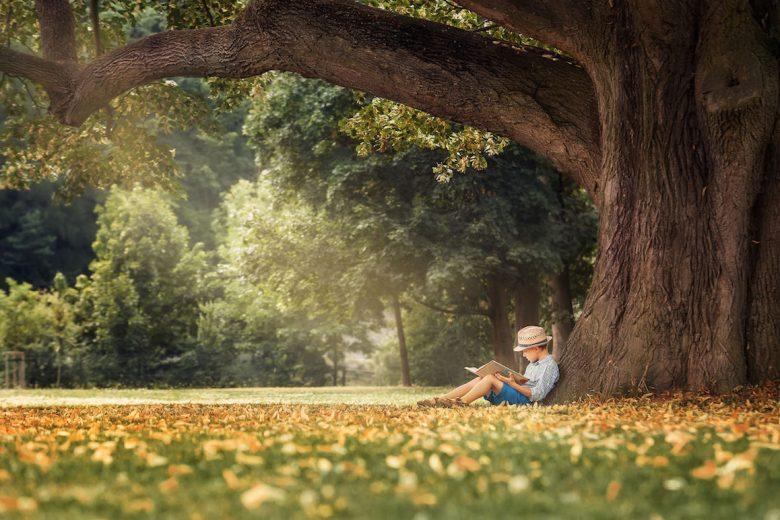 gyerek olvas a fa alatt