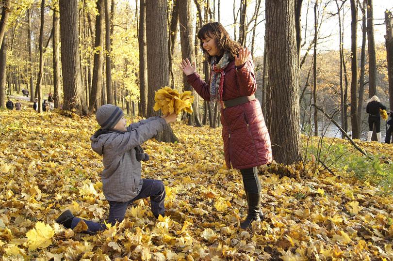 Fiú gyermek egy köteg száradó falevelet ad az anyjának - gyereknevelés